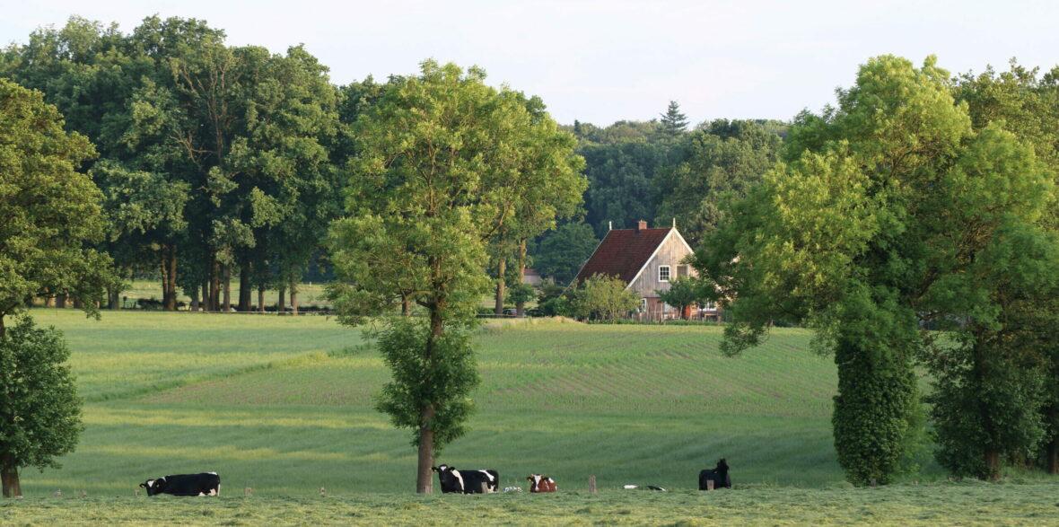 Nieuwe routes in Noord Twente